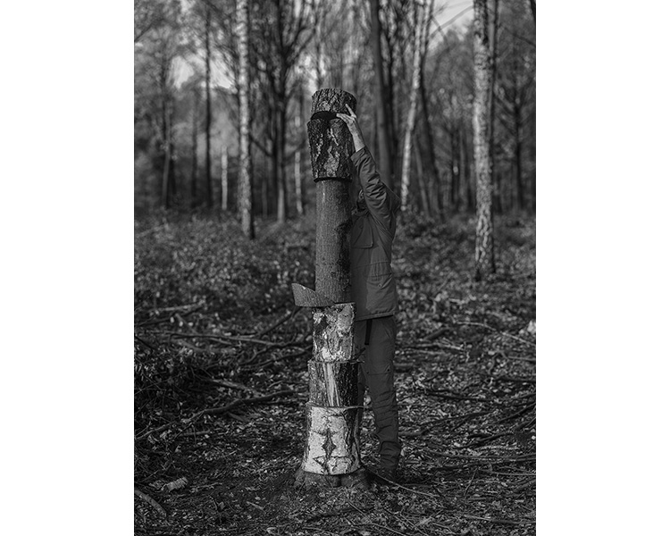 forest_works_001