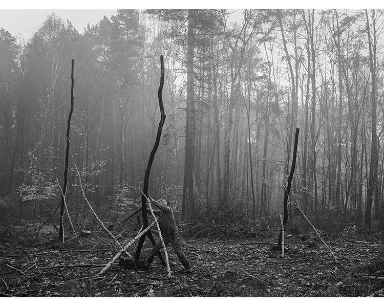 forest_works_007